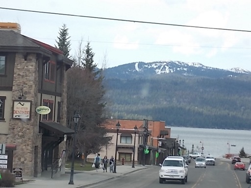 McCall DT 1