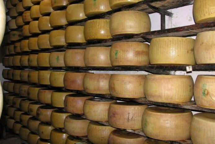 Par 8 Shelves of Cheese