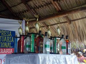 Tournament Awards