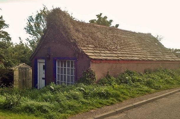 10 cottage