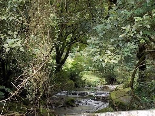 El Valle De Anton Creek
