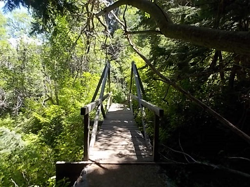 LT Hiking Trail 6