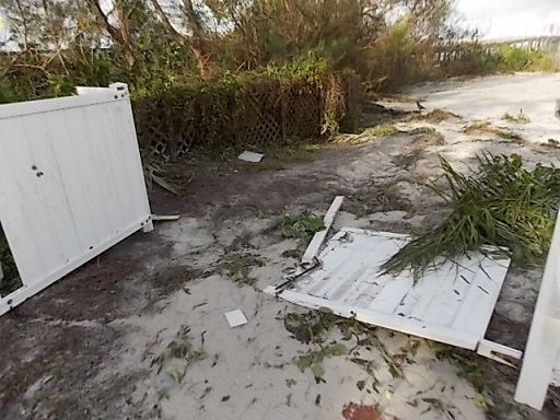 the day after irma