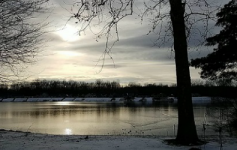 wintry photo