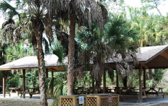 an image of a picnic area in koreshan state park