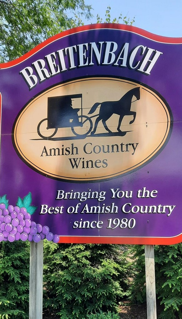 amish wine country